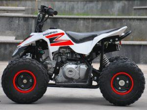 New 110cc Thundercat Quad Bike In Red