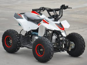110cc 4 Stroke Kids Quad Bike – Thunder Cat – RED With Reverse