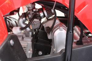 125cc 4 Stroke Quad W/ Reverse - (CONDOR) - RED w/ Reverse PRE ORDER